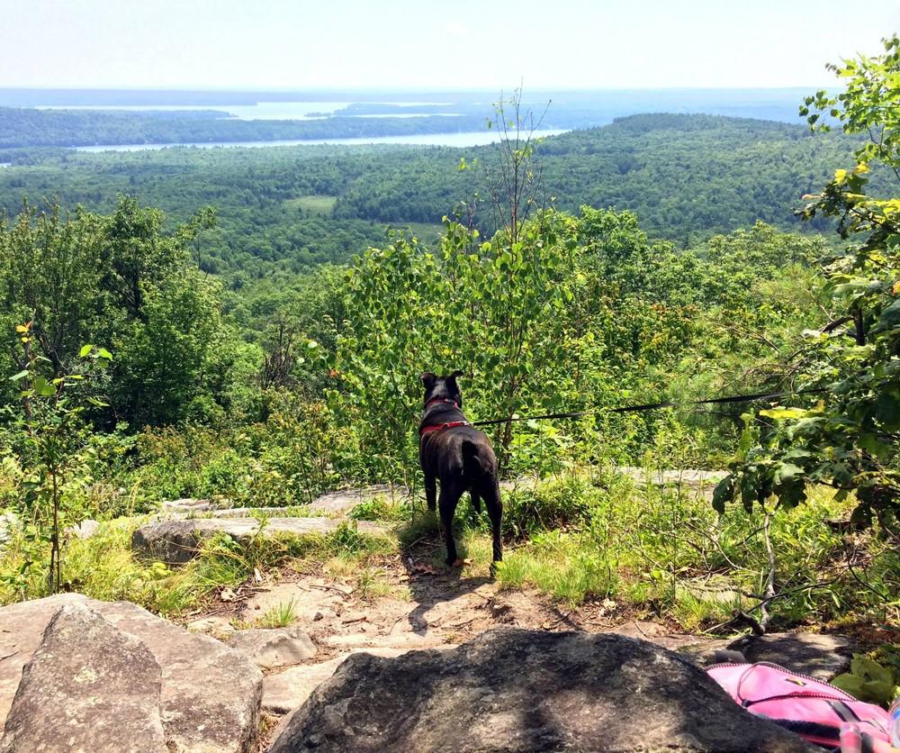 Kennebec Highlands Round Top Maine Trail Finder