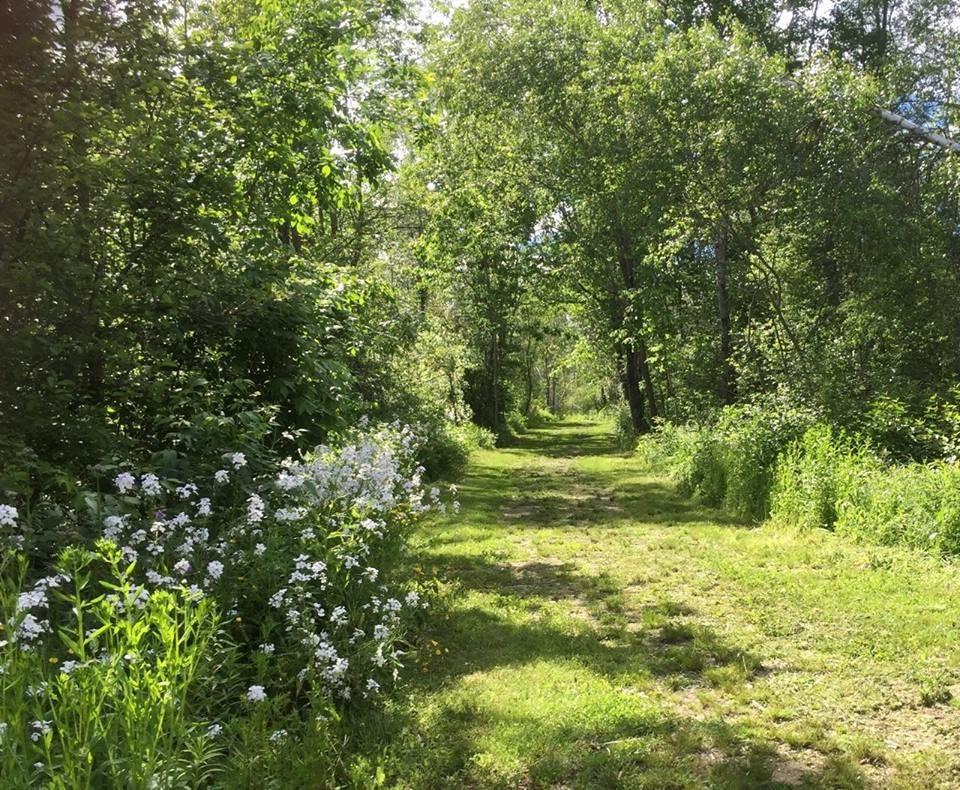 Reeds Brook Trails Maine Trail Finder