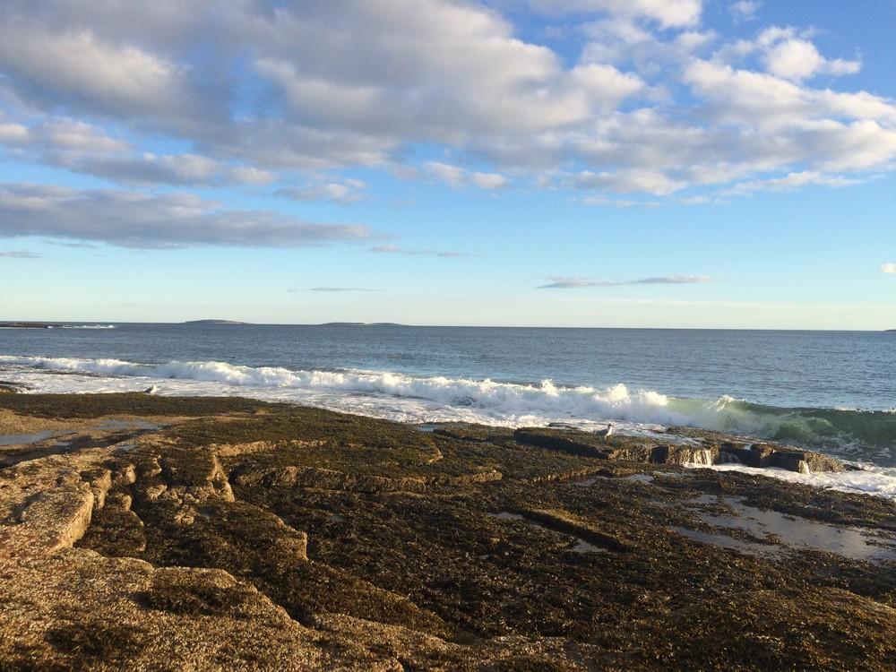 Acadia National Park - Wonderland Trail