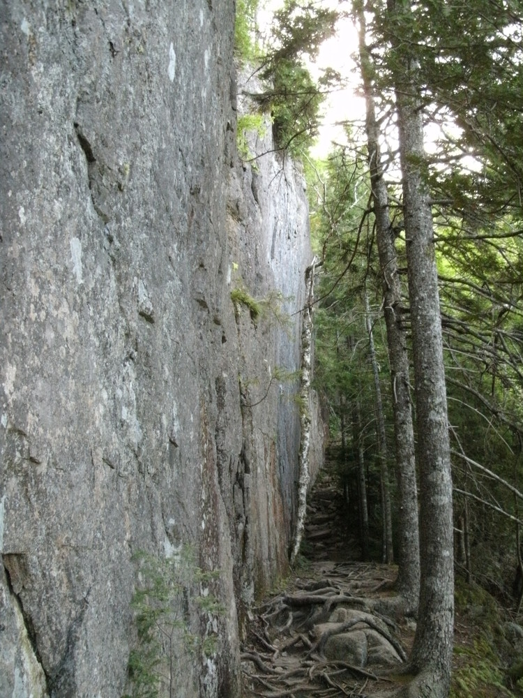 Acadia National Park Canada Cliff Loop Maine Trail Finder