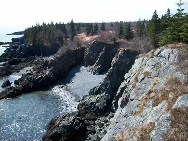 Cutler Coast Public Reserved Land Maine Trail Finder